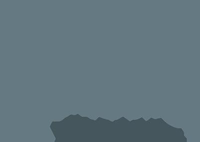 Dandelion Breeze Logo